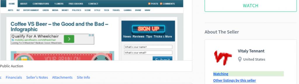 affiliate-marketing-blogging-vitalytennant.com-vitaly-tennant-sedo-flippa